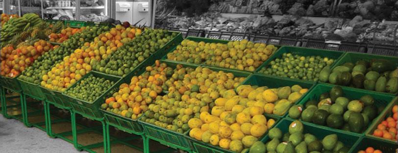 exhibidor-frutas